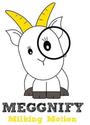Meggnify