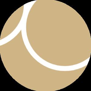 Aurum (Data Governance) Consultancy