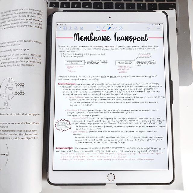 Biology notes on ipad 2