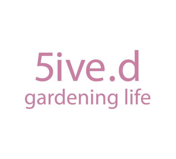 5d logo pink web box 409534e9 0d75 411a b48c 861708dba937 580x