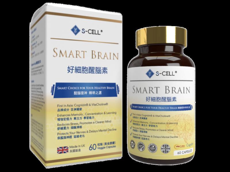 Smart brain 3d