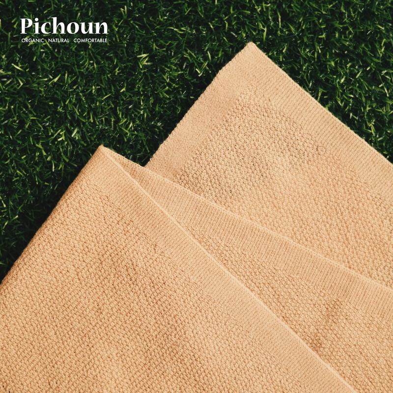 Pichoun 10